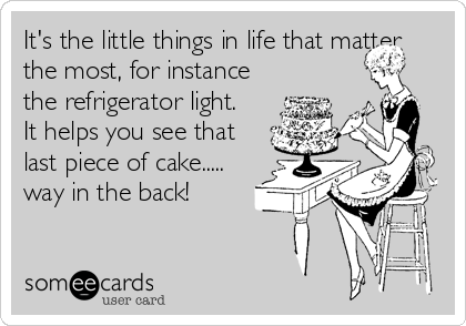 It's the little things in life that matter the most, for instance the refrigerator light. It helps you see that last piece of cake..... way in the back!