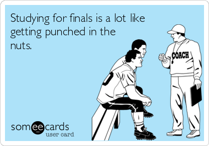Studying for finals is a lot like getting punched in the nuts.