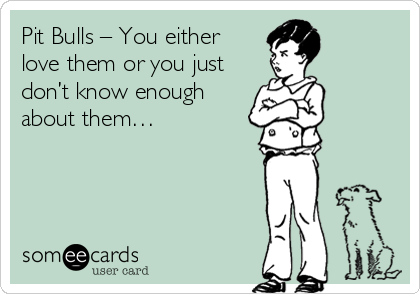 Pit Bulls – You either love them or you just don't know enough about them…