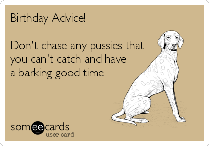 Birthday Advice!   Don't chase any pussies that you can't catch and have a barking good time!
