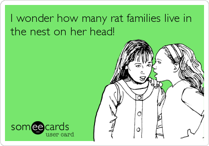 I wonder how many rat families live in the nest on her head!