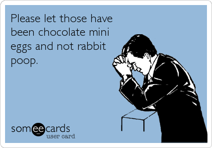 Please let those have been chocolate mini eggs and not rabbit poop.