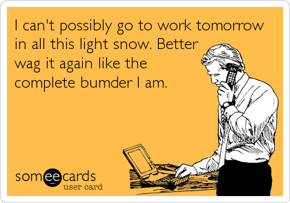 I can't possibly go to work tomorrow in all this light snow. Better wag it again like the complete bumder I am.