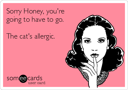 Sorry Honey, you're going to have to go.  The cat's allergic.