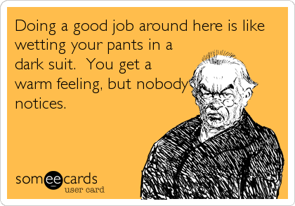 Doing a good job around here is like wetting your pants in a dark suit.  You get a warm feeling, but nobody notices.