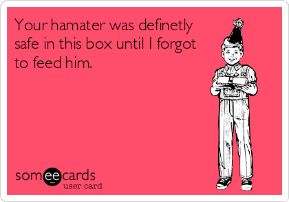 Your hamater was definetly safe in this box until I forgot to feed him.