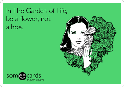In The Garden of Life,be a flower, nota hoe.