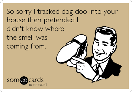 So sorry I tracked dog doo into your house then pretended I didn't know where the smell was coming from.