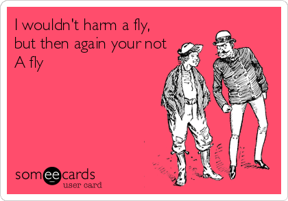 I wouldn't harm a fly, but then again your not A fly