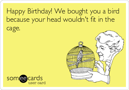 Happy Birthday! We bought you a bird because your head wouldn't fit in the cage.