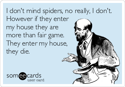 I don't mind spiders, no really, I don't. However if they enter my house they are more than fair game. They enter my house, they die.