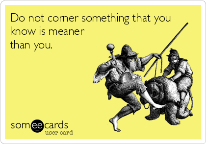 Do not corner something that you know is meaner than you.