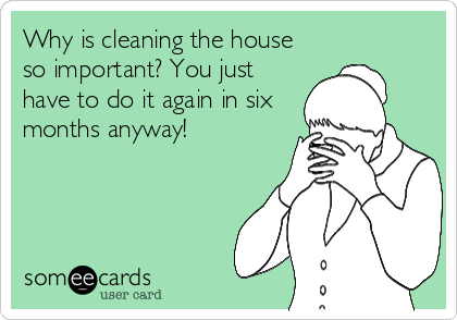 Why is cleaning the house so important? You just have to do it again in six months anyway!