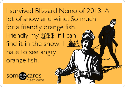 I survived Blizzard Nemo of 2013. A lot of snow and wind. So much for a friendly orange fish. Friendly my @$$, if I can find it in the snow. I%