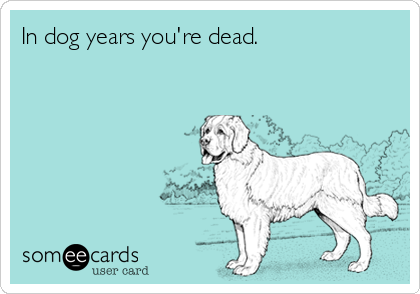 In dog years you're dead.