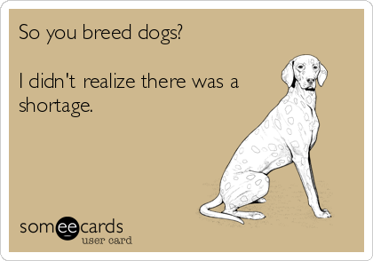 So you breed dogs?           I didn't realize there was a  shortage.