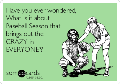 Have you ever wondered, What is it about Baseball Season that brings out the CRAZY in EVERYONE??