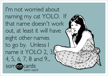 I'm not worried about naming my cat YOLO.  If that name doesn't work out, at least it will have eight other names to go by.  Unless I name it YOLO 2, 3, 4, 5, 6, 7, 8 and 9...