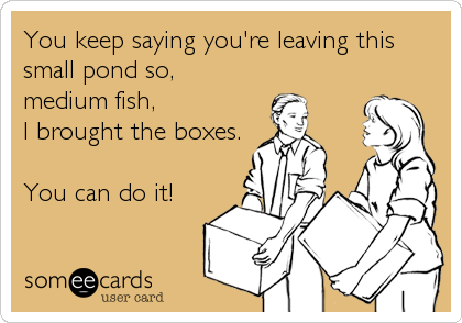 You keep saying you're leaving this small pond so,  medium fish, I brought the boxes.  You can do it!
