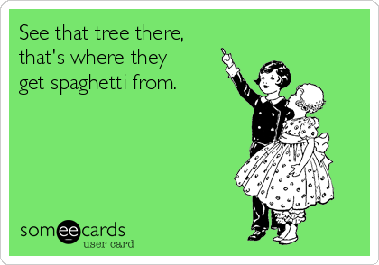 See that tree there,  that's where they  get spaghetti from.
