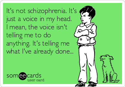 It's not schizophrenia. It's just a voice in my head. I mean, the voice isn't telling me to do anything. It's telling me what I've already done...