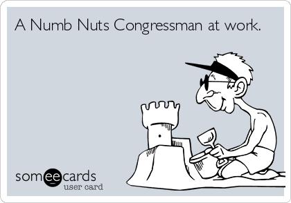 A Numb Nuts Congressman at work.