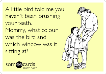 A little bird told me you