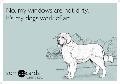 No, my windows are not dirty.  It's my dogs work of art.