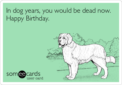 In Dog Years You Would Be Dead Now Happy Birthday
