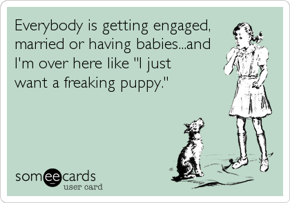 "Everybody is getting engaged, married or having babies...and I'm over here like ""I just  want a freaking puppy."""