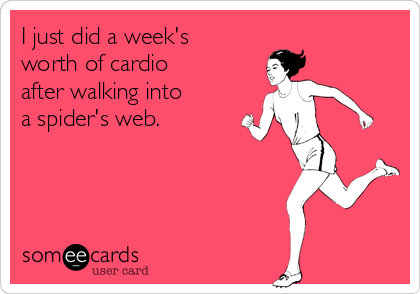 I just did a week's worth of cardio after walking into a spider's web.