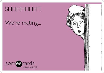 SHHHHHHH!!!  We're mating...