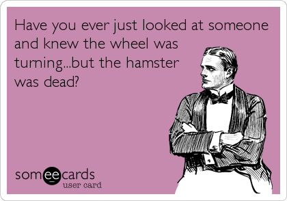 Have you ever just looked at someone and knew the wheel was  turning...but the hamster was dead?