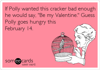 """If Polly wanted this cracker bad enough he would say, """"Be my Valentine."""" Guess Polly goes hungry this February 14."""