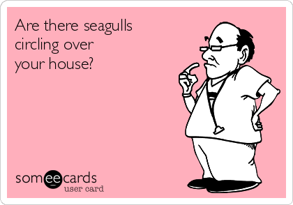 Are there seagulls circling over  your house?
