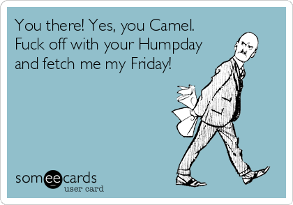 You there! Yes, you Camel. Fuck off with your Humpday and fetch me my Friday!
