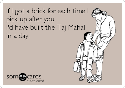 If I got a brick for each time I pick up after you,  I'd have built the Taj Mahal in a day.