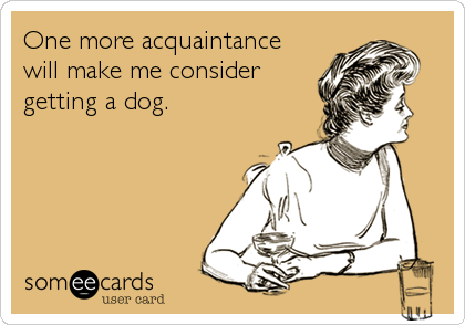 One more acquaintance will make me consider getting a dog.