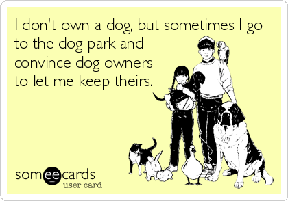 I don't own a dog, but sometimes I go to the dog park and convince dog owners to let me keep theirs.