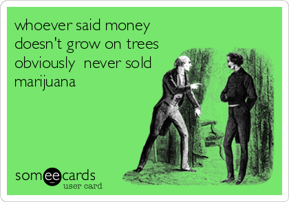 whoever said money doesn't grow on trees obviously  never sold marijuana