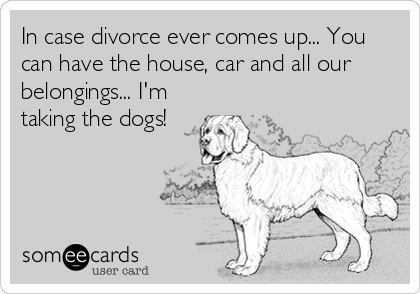 In case divorce ever comes up... You can have the house, car and all our belongings... I'm taking the dogs!