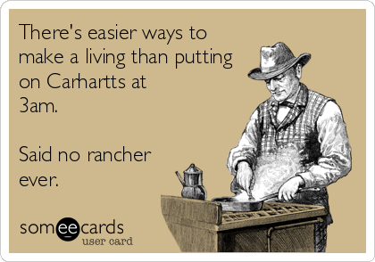 There's easier ways to make a living than putting on Carhartts at 3am.  Said no rancher ever.