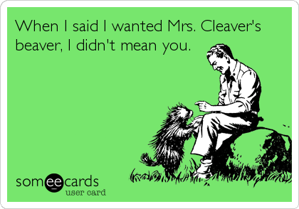 When I said I wanted Mrs. Cleaver's beaver, I didn't mean you.