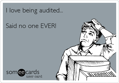 I love being audited...  Said no one EVER!