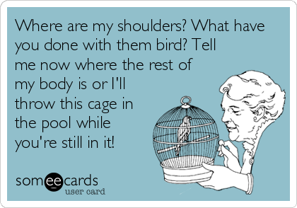 Where are my shoulders? What have you done with them bird? Tell me now where the rest of my body is or I'll throw this cage in the pool while you're still in it!