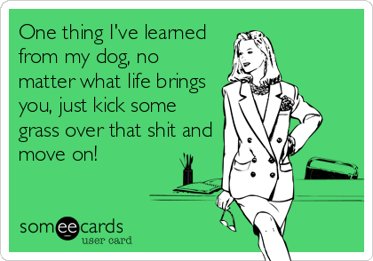 One thing I've learned from my dog, no matter what life brings you, just kick some grass over that shit and move on!
