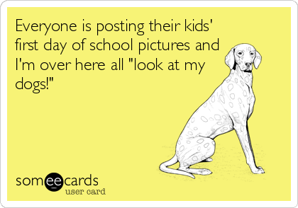 "Everyone is posting their kids' first day of school pictures and I'm over here all ""look at my dogs!"""