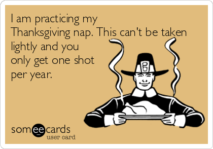 I am practicing my Thanksgiving nap. This can't be taken lightly and you only get one shot per year.
