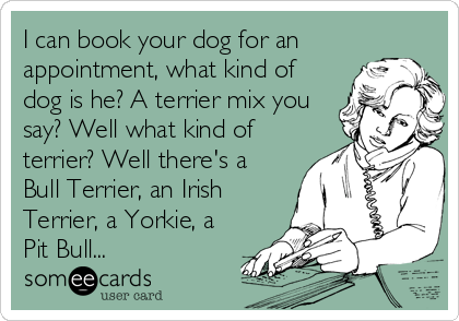 I can book your dog for an appointment, what kind of dog is he? A terrier mix you say? Well what kind of terrier? Well there's a Bull Terrier, an Irish Terrier, a Yorkie, a Pit Bull...