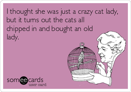 I thought she was just a crazy cat lady, but it turns out the cats all chipped in and bought an old lady.